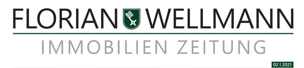 Florian Wellmann 02.2021